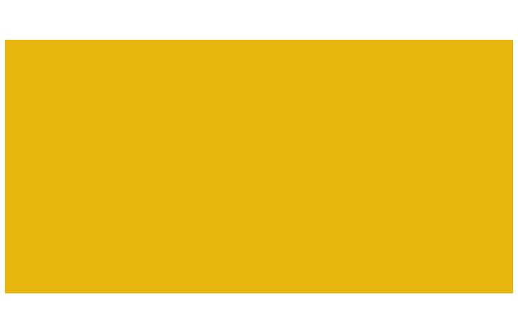 Informação Nutricional - PSYLLIUM